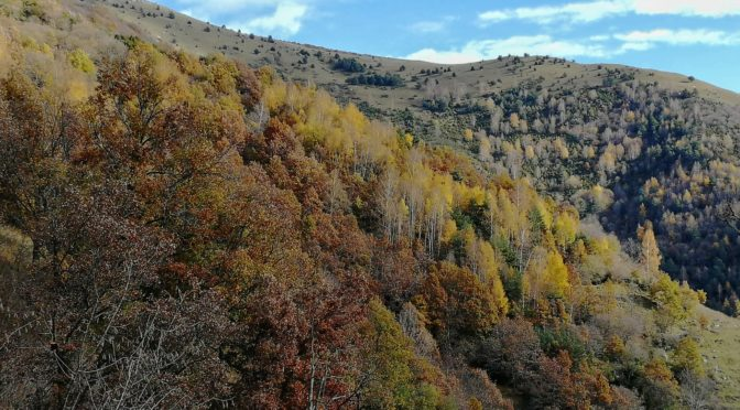 La vall del Segadell